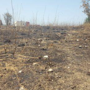 Ciudadanos (Cs) Sabadell lamenta que la falta de mantenimiento haya avivado un incendio en el Parc de les Aigues
