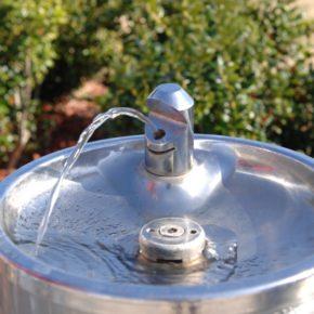 Ciutadans Sabadell reclama que en caso de sequía no se cierren las fuentes de agua de boca.